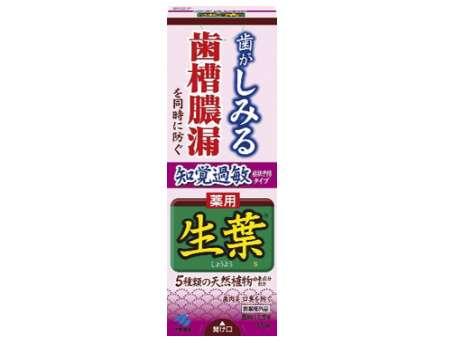 生葉(しょうよう) 知覚過敏症状予防タイプ 歯槽膿漏を防ぐ 薬用ハミガキ