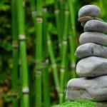 竹林と積まれている石